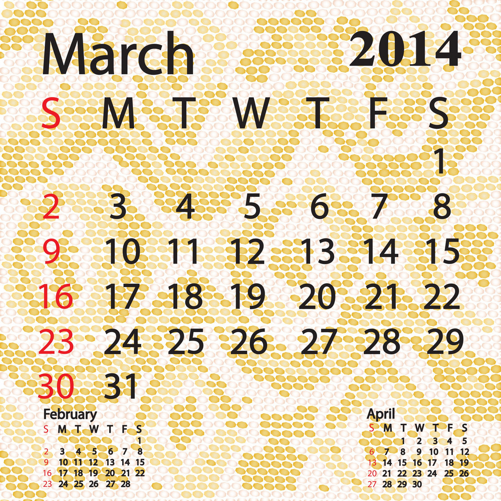 March 2014 Calendar Albino Snake Skin