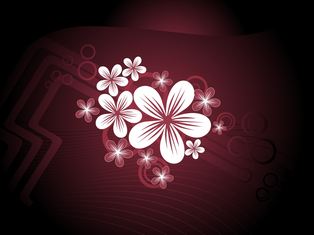 Maroon Background With Blossoms