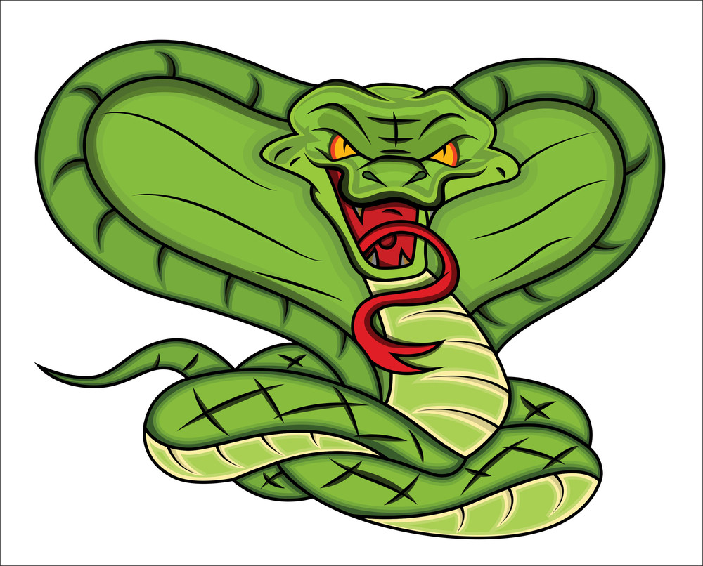 Mascot  Of Angry Snake Vector Illustration
