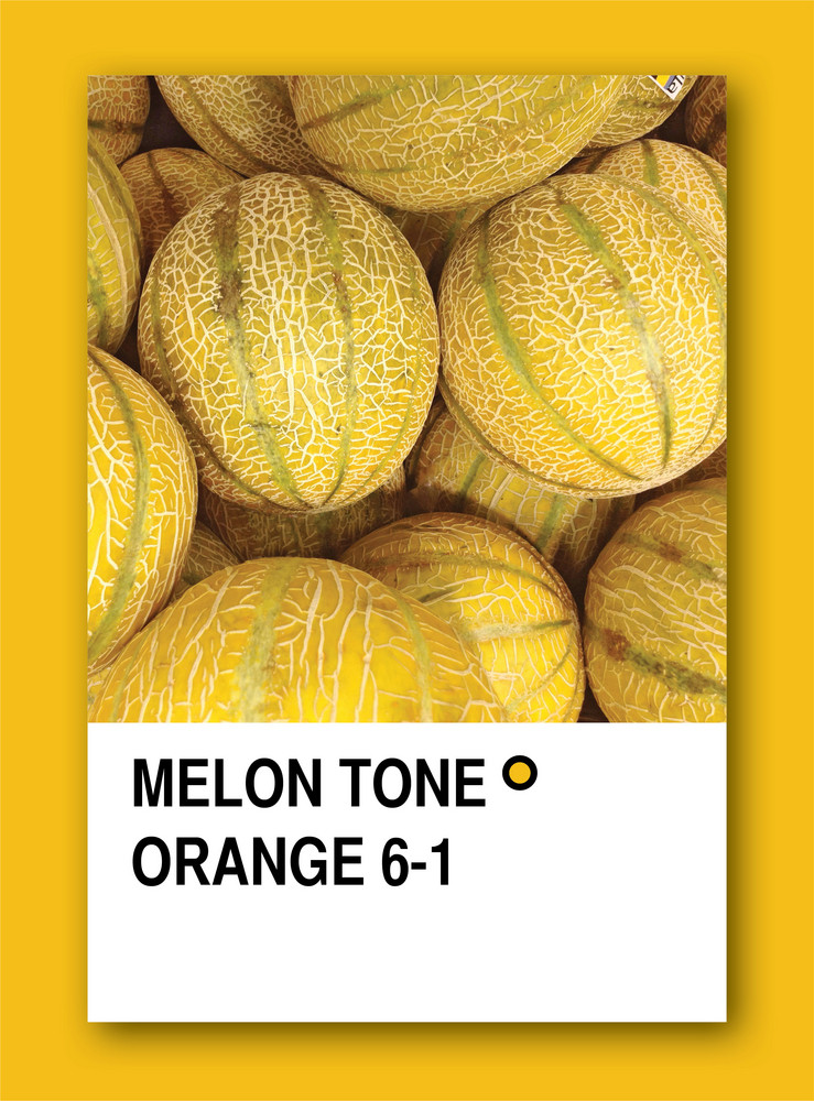 Melon Tone Orange. Color Sample Design