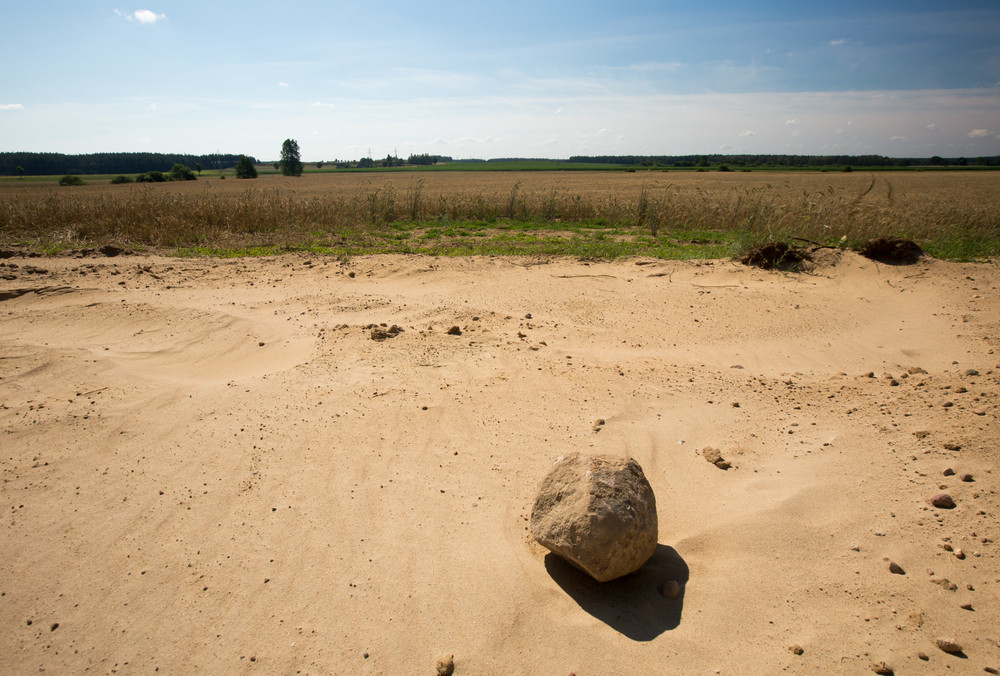 Dried land near fields