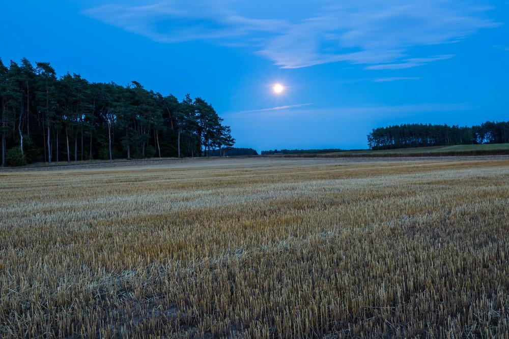 Field landscape under rising moon