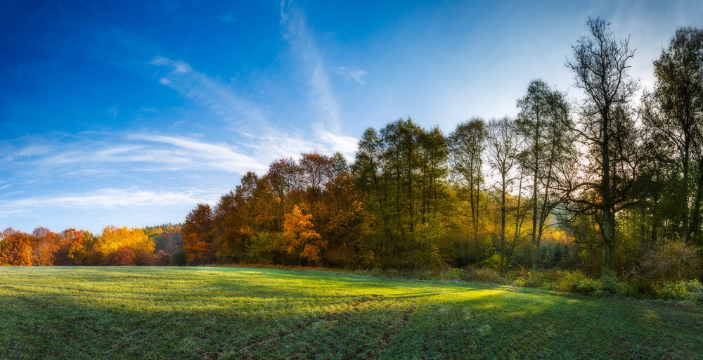Panoramic landscape of green field at autumnal morning. Beautiful polish landscape photographed in october at cold morning.