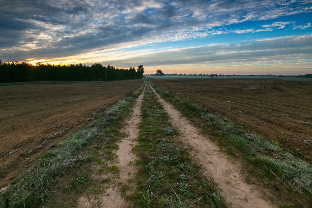 Beautiful landscape with plowed fields and rural road under sunset or sunrise sky. Agriculture of Poland.