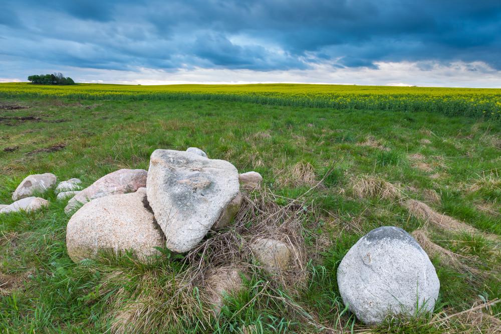 Stones on field near rapeseed field under dark cloudy sky. Storm over field.