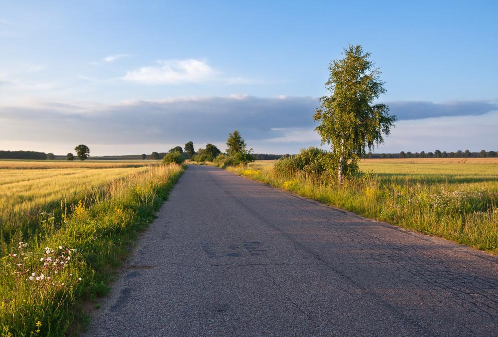 Asphalt rural road near village photographed in good golden hour light