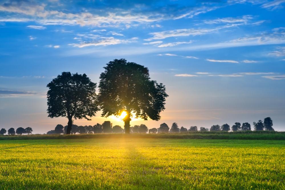 生動的天空夕陽特色的顏色和淡淡的雲彩。