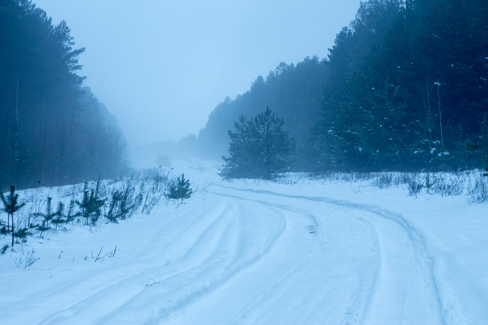 Misty early morning. Rural winter snowy road in the forest