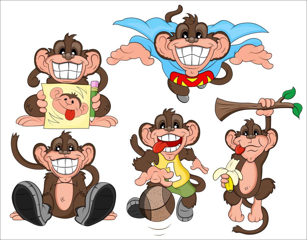 Monkey Vectors