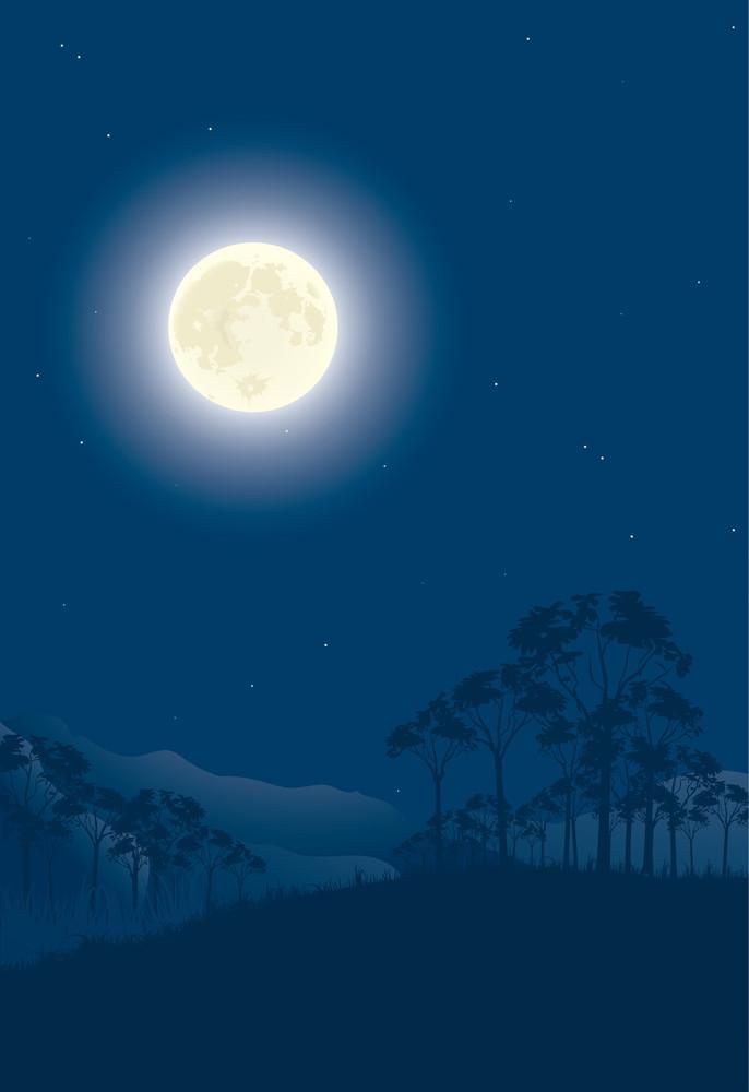 Moon Night. Vector Illustration.