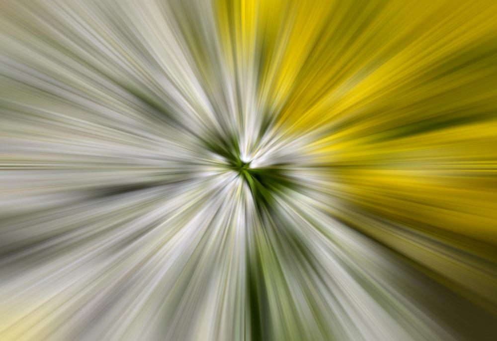Motion Effect