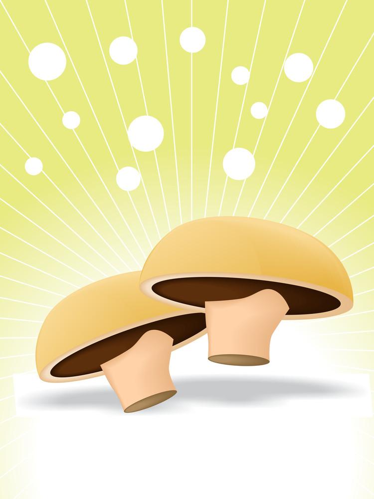 Mushroom Vector Illustration