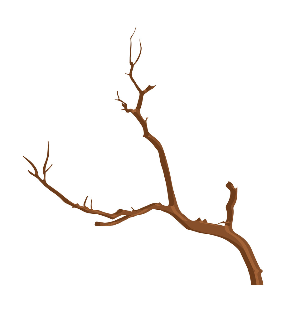 Nature Dead Tree Stem Vector