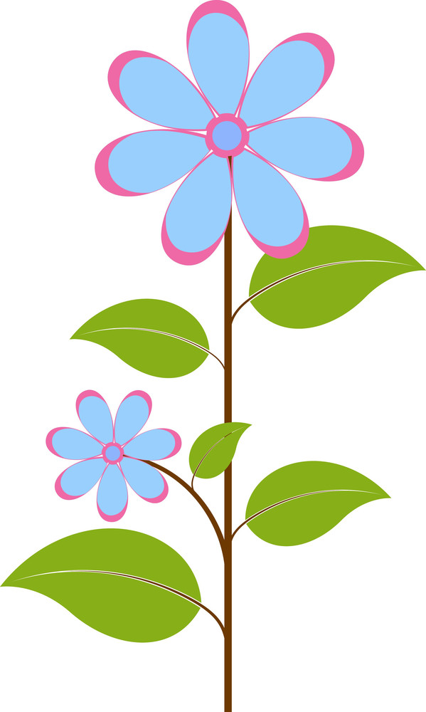 Nature Flower Branch Vector