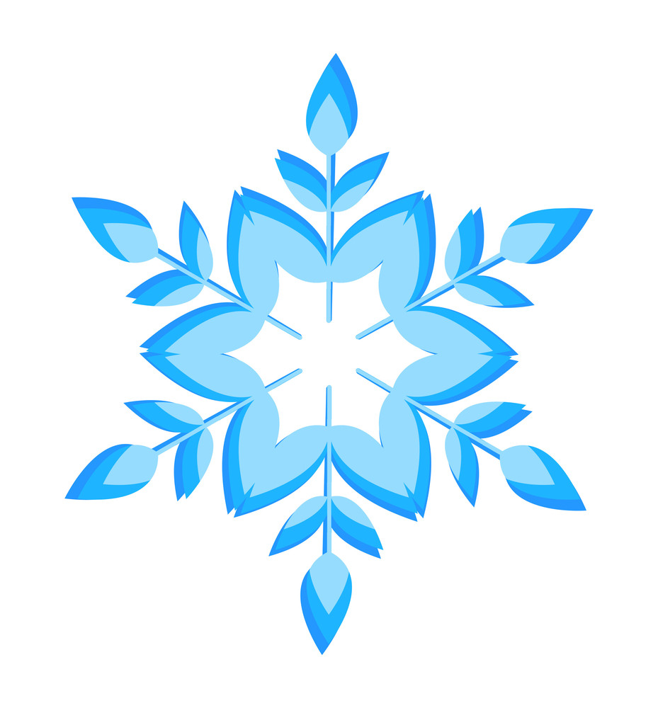 Nature Foliage Snowflake