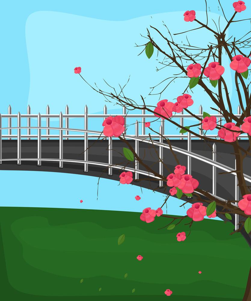 Nature Garden Background