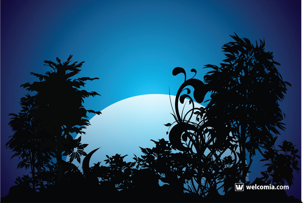Night Garden Vector