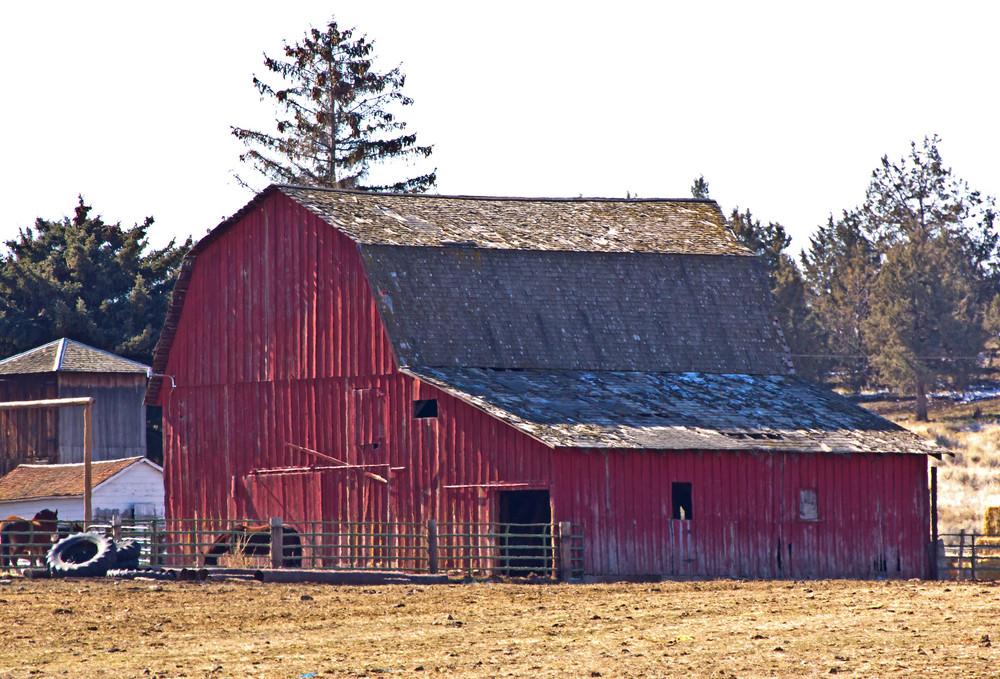 Old Barn Cabin