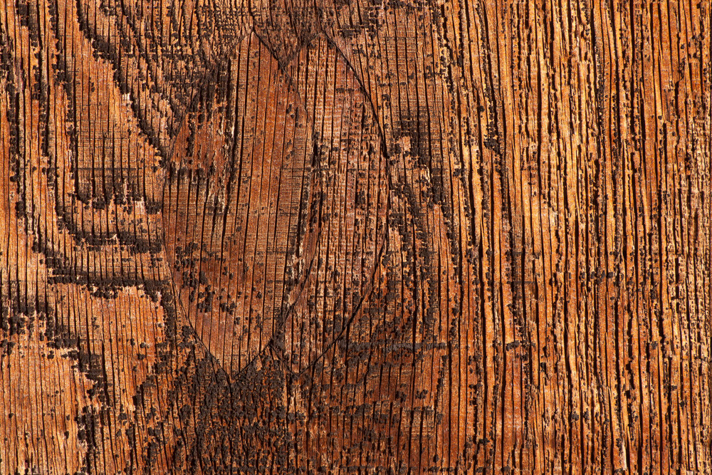 Old Barnwooden Texture