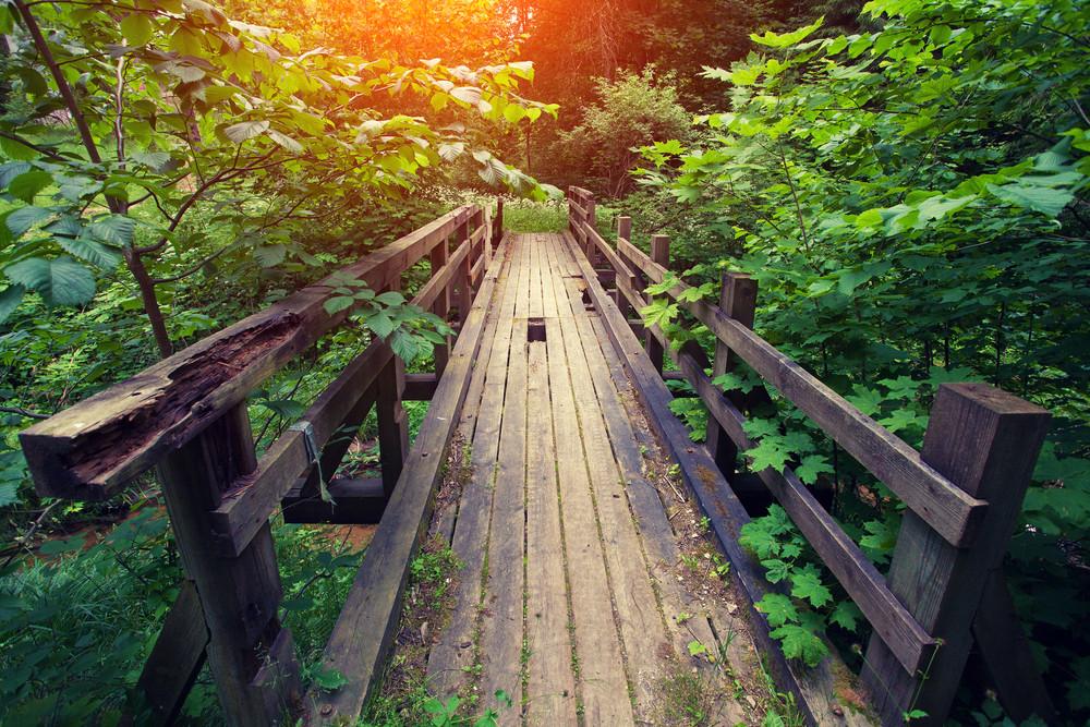 Old broken wooden bridge