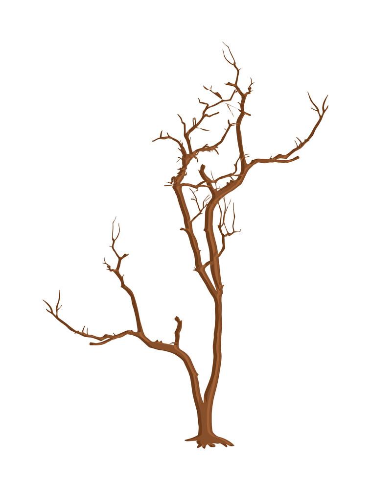 Old Dead Tree Design