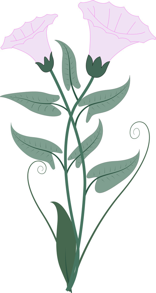 Old Flower Clipart
