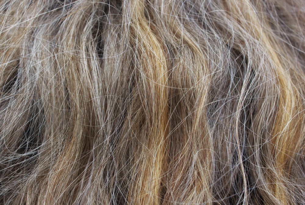 Old Person Hair Texture