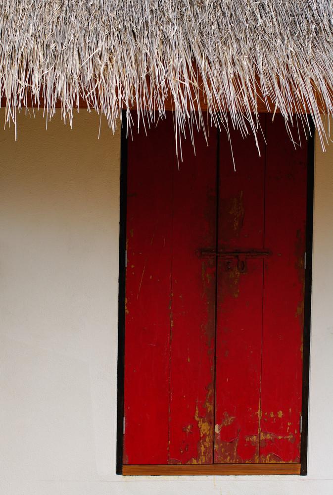 Old red door exterior detail background