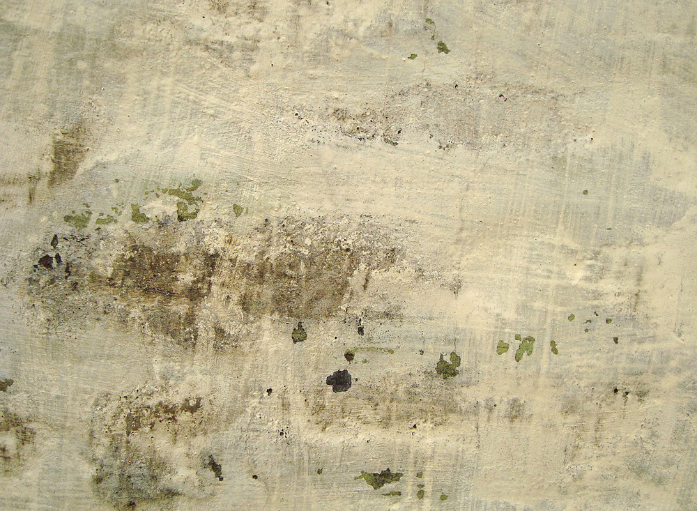 Old_plaster_wall
