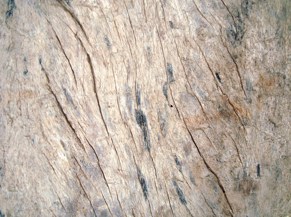 Old_wood_texture_surface_background