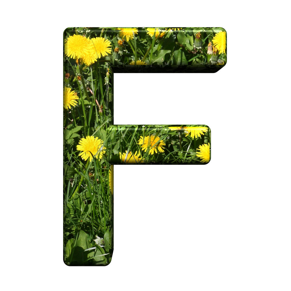 One Letter From Floral Alphabet Set