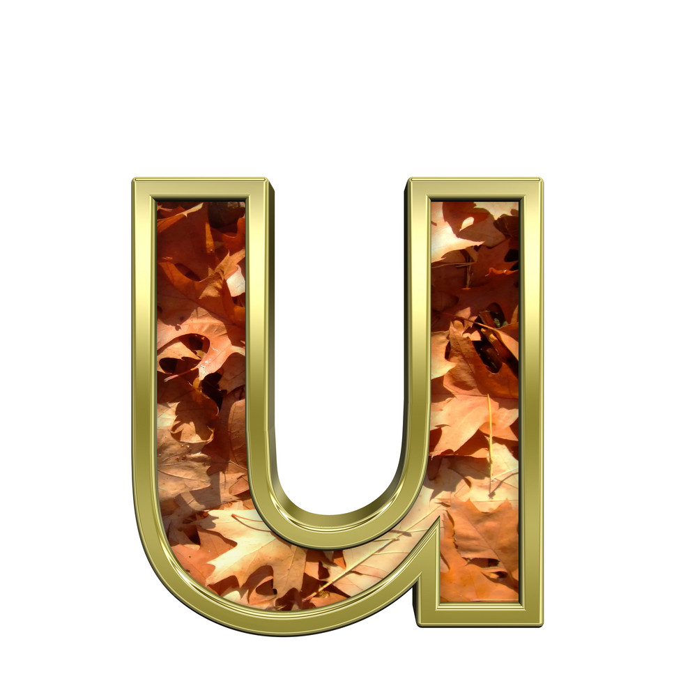 One Lower Case Letter From Autumn Gold Alphabet Set