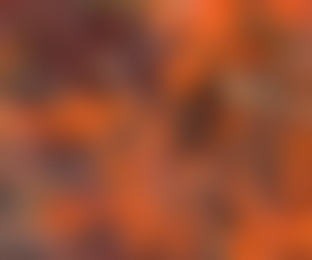 Orange Blurred Picture Texture