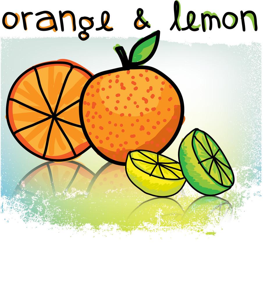 Orange & Lemons Illustration