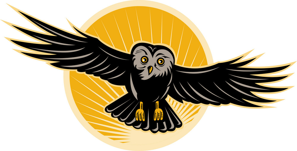 Owl Flying Front