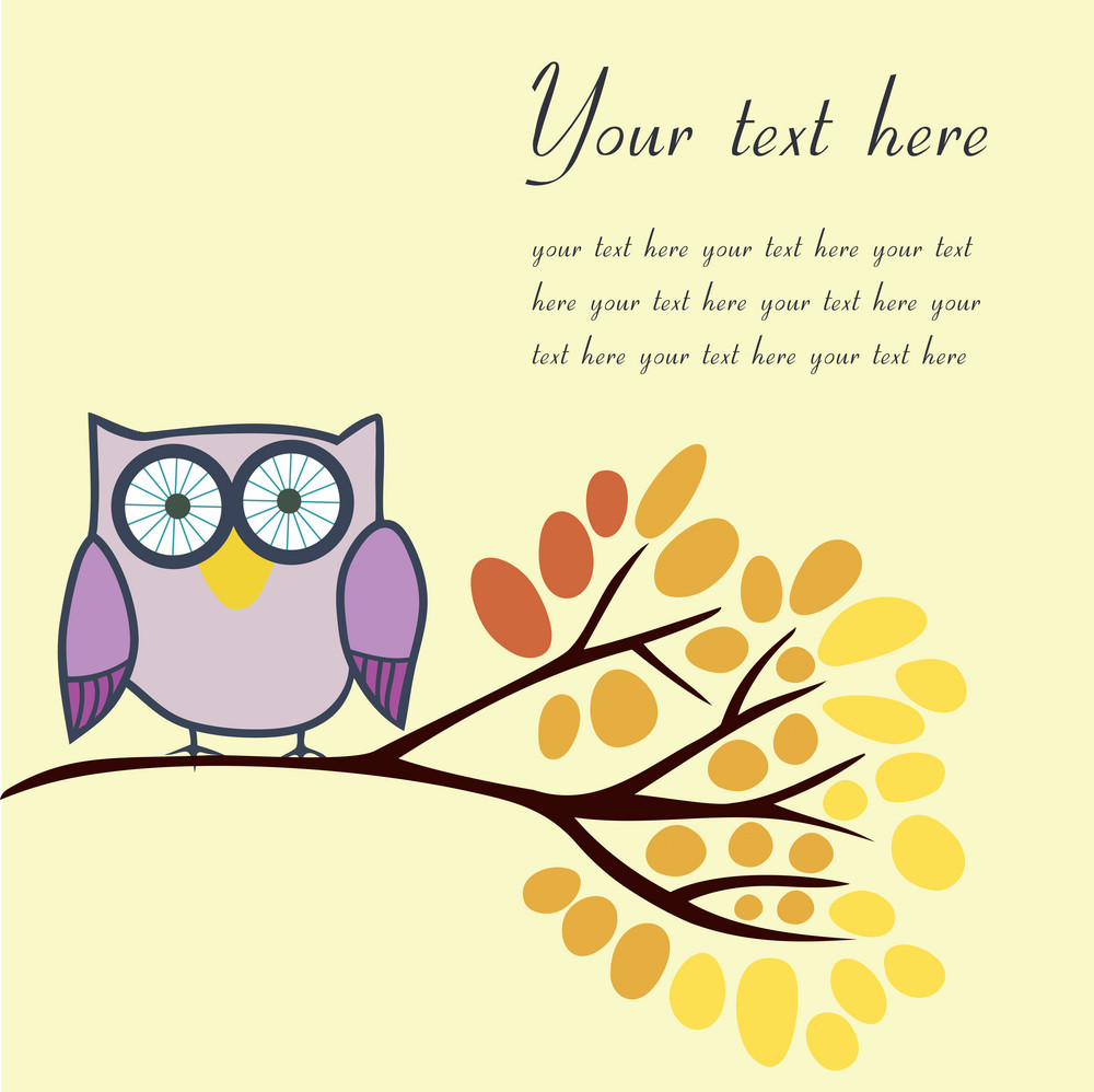 Owl On An Autumn Branch With Place For Your Text.