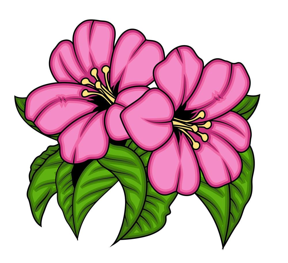 Pair Of Pink Flowers