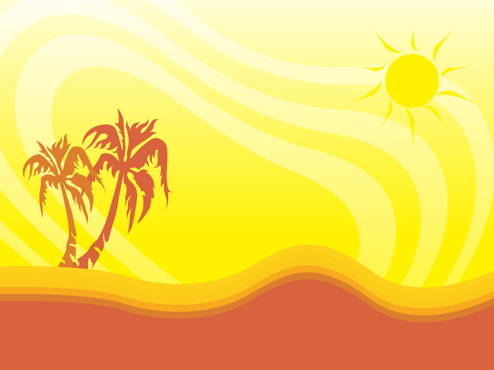 Palm Tree On Sunny Summer Background