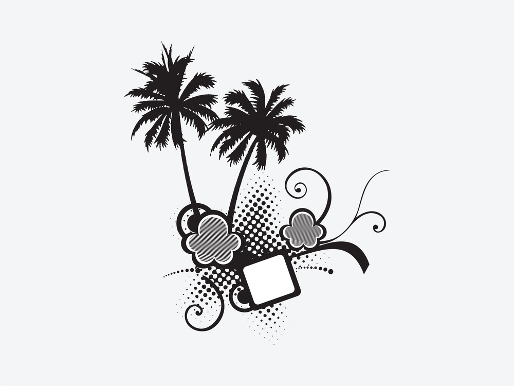 Palm Trees And Floral  Elements For Text Area On White Background