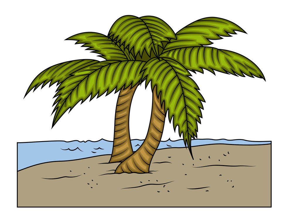 Palm Trees At Island Vector