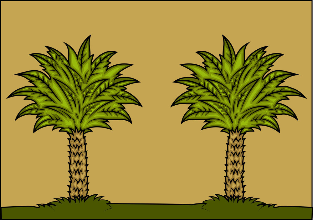 Palm Trees Background