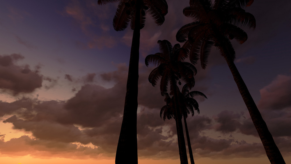 Palms In Moonlight