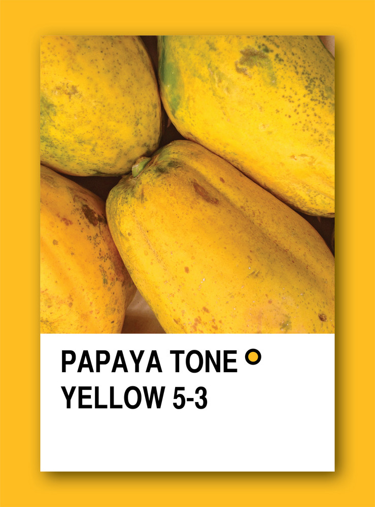 Papaya Tone Yellow. Color Sample Design
