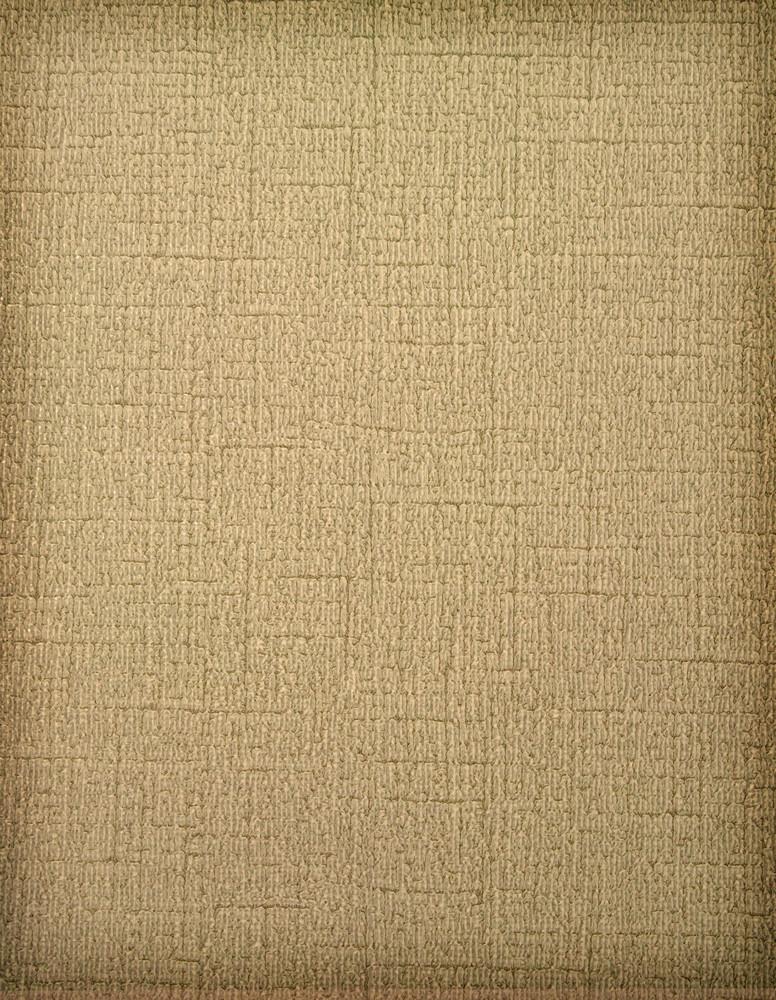 Paper Sepia Texture Vignette