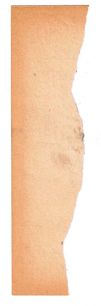 Paper Torn 4 Texture
