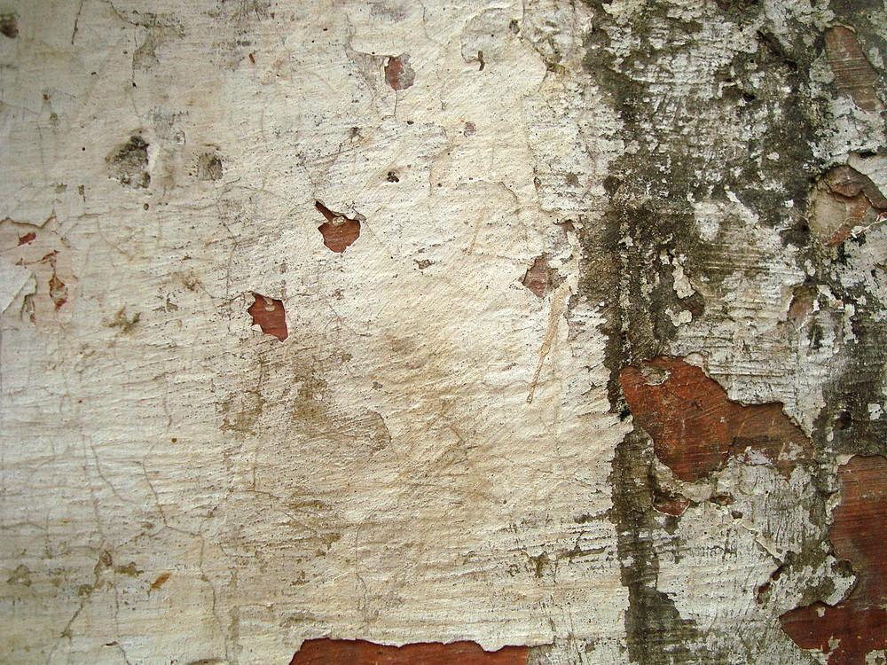 Peel_off_grunge_wall
