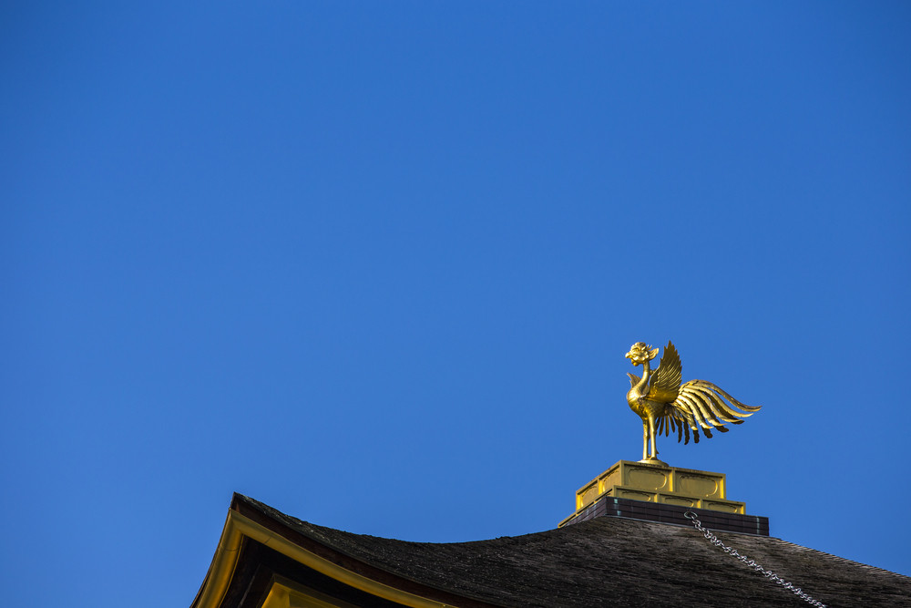 Phoenix on top of Kinkakuji the golden pavillion. Kyoto. Japan