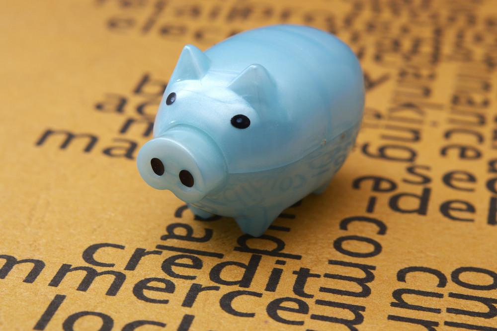 Piggy Bank On Credit Application Concept