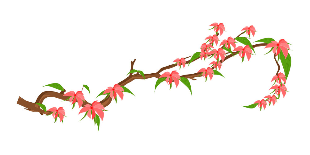 Pink Autumn Flowers Branch