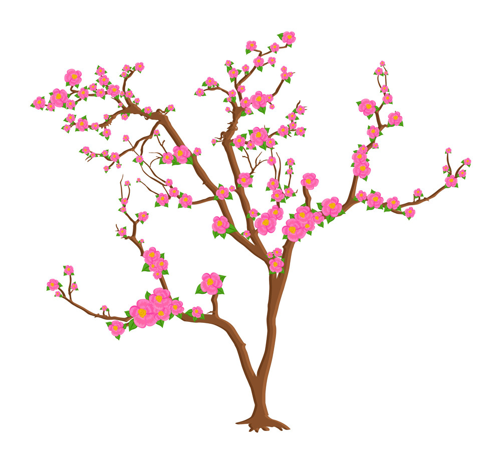 Pink Daisies Tree